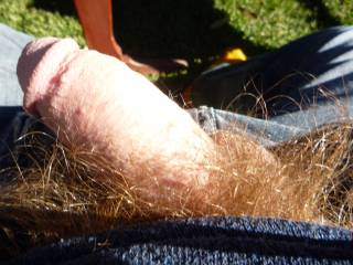wow, need some sunshine on my cock in the great outdoors