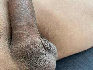Freshly trimmed lazy cock and balls