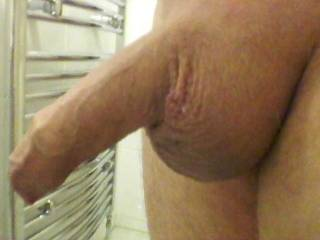all shaved just need help to make it hard any offers