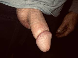 Penis ready to be sucked, any takers?