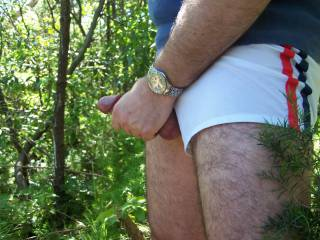 Outdoors feeling frisky, had to get my cock out.