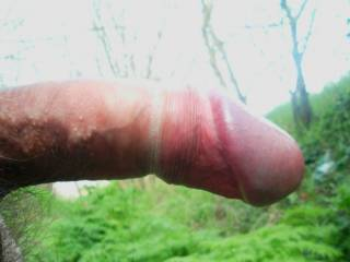 Zoom On My Straight Dick Outdoor!