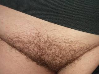 One of my exes hairy pussy. My cock would get so hard for her bush. She loves to fuck. She also has huge tits. I will try and find a pic of them. What would you do to her beautiful pussy? Tell me