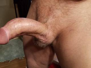 Brian S showing his hard erect cock