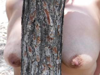 On a walk in the forest whilst on holiday in Spain....it was so hot that I just had to take some clothes off......found this good bit of wood to hide behind....anybody out there got any good wood?