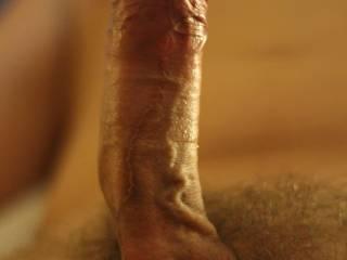 His hard cock