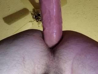 I want to ride your hard cock like this, until you cum inside