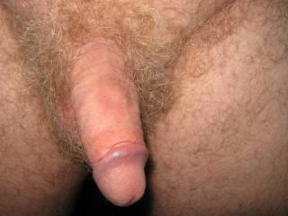Very Nice little cock ! I would LUV to suck it !  ! !