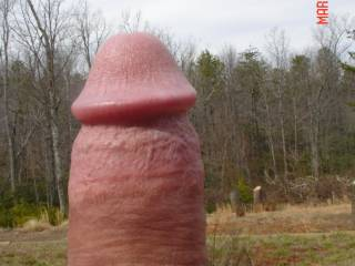 nice cock outside makes me horny...would suck it hard!