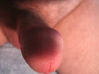 Thats so in my face and I'm liking it too...mmmm I can almost taste your Sweet Cock