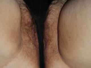 hairy panties