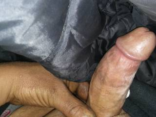 Here is my cock looking for some fun are you ready ladies?