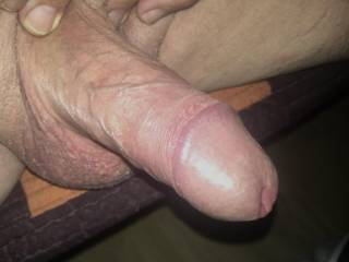 Hardcock looking for pussy... please step forward all cunt!!