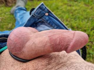 Out in the yard hard and free, wish there was some one here to play with.