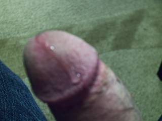 My dick with pre-cum