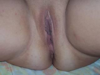 chubby pussy
