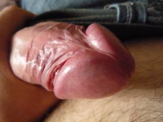 Anyone want to suck on my dick?