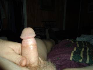 Jerking my cock.  Anyone like to suck it for me?