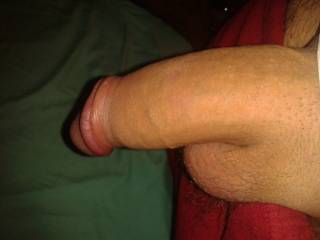 Mmmmm, huge and fresh shaved... exactly how i like it... i want to take your cock deep in my mouth till i feel your cum blast coating my throat!!!