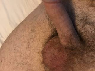 My hairy cock ready for action