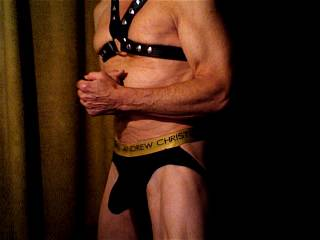 Harness and sexy underwear.