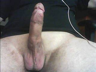Frontal view of my shaved cock