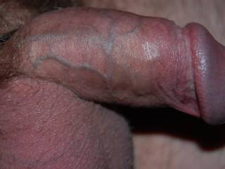 A nice close up, veins are starting to pop!