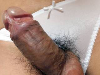 White nylon panties and penis.