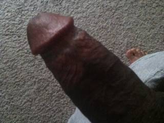 """Well Hello!! mmm ;)  Nice Hard Cock!! mmm ...  Grab me from Behind ... Bend me Over ... Rip Off my Panties ... Wet your Big Fingers ... Slide all of them Deep in my Pussy!! Until She's Sopping Wet!!  Pull my Pussy Lips Wide Apart!! Slide your Big Cock Deep in Her!! And Don't Stop Thrusting Until I have the Full-Length and Every Last Inch of your Hard Cock Deep in My Tight Wet Pussy mmm.  And Don't you Dare Stop Fucking me, Until I have Cum, and Squirted Hard m-mm-mmm .....  Fuck me with """"reckless abandon"""".  You make me such a Naughty Girl 4U!! ;)  Naughty Lucy? -x-"""