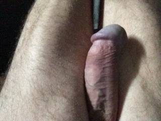 dick is hard, and ready for a blowjob by  mistress.