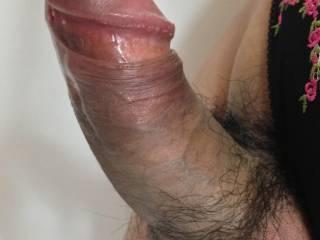 My penis.