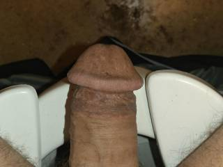My cock is telling me he is hungry he is starting go grow