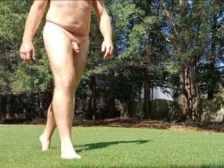 walking back yard
