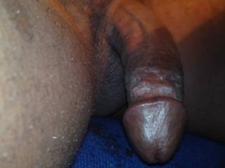 hungry for a wet pussy or ass