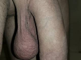 """This is my fully flaccid state, no extra swelling at all. 6.5"""" long from tip to pubic bone. Fully erect? Take a guess."""