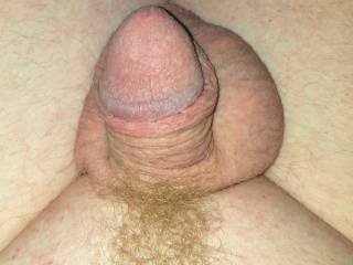 Trimmed tiny white small ginger penis cock dick and balls close up