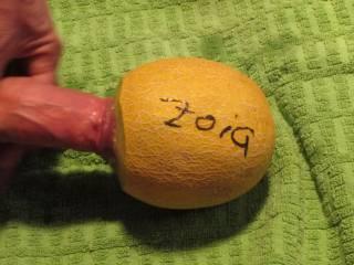 Dick in a ZOI dedicated melon