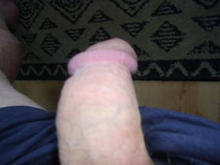 Wow my thick 9''cock is waiting to fuck a nice big pussy help me please I am very horny