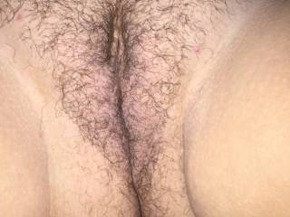 What I wouldn't give to be able to rub my cock all over her amazing hairy pussy and ass