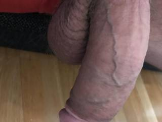 My cock waiting for see some hot Zoigers.