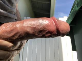Some fun in the sun My cock is ready  Are you ready? Ready or not here I cum 💦