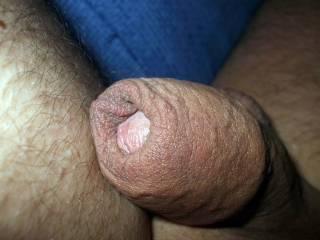 Uncut cock