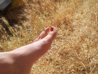 I´m getting hot while i´m looking your feet ! I want to lick and suck ....