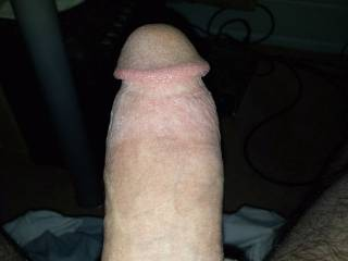 work that fat cock in of course