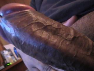hubby\'s fat latin cock look at those sweet veins anybody wants to suck on it