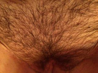 Hairy pussies are back in!! U like?? Cause I do!!