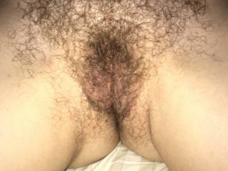 Wife's hairy pussy  It has never been trimmed or shaved. What do you think about it?