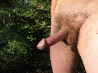 Ready for a forest adventure with a sun warmed cock?