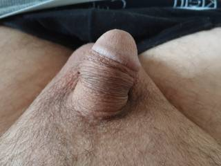 My tiny coked up cock