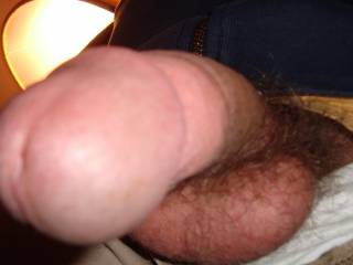 I love this pic such a good view of the head